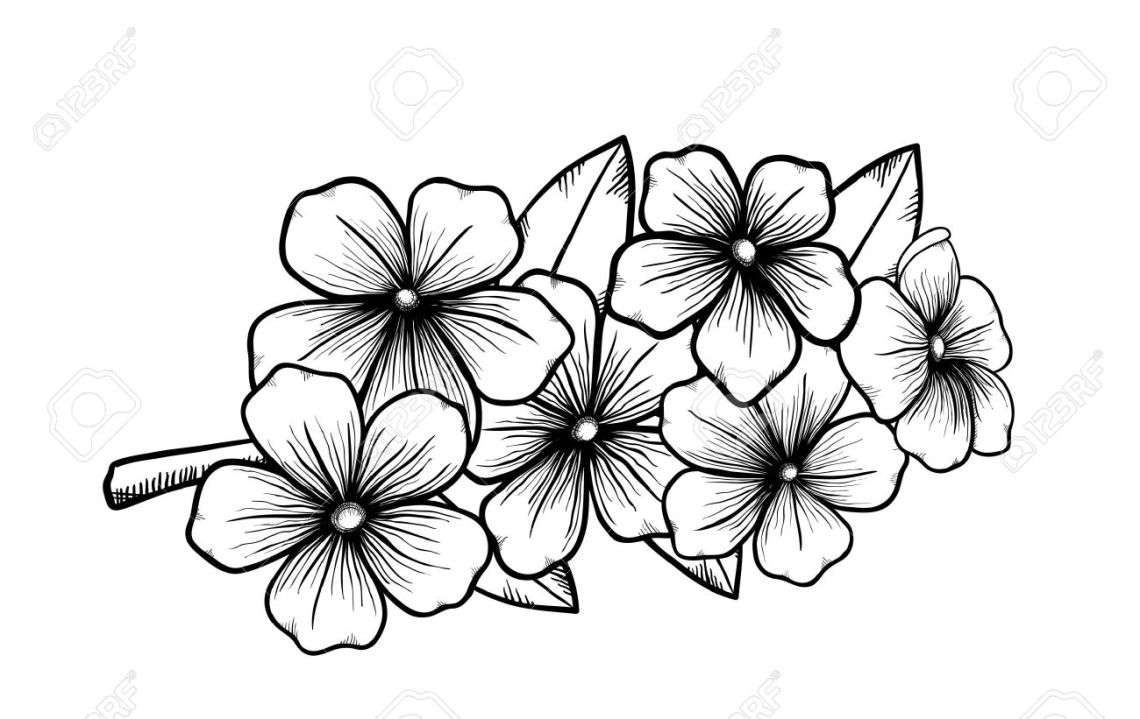 Fleurs TPS